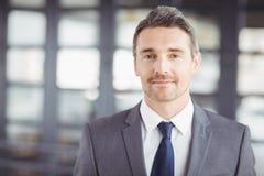 Verticale d'homme d'affaires bel confiant photo libre de droits
