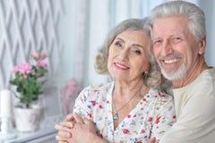 Verticale d'un couple aîné heureux Photo stock
