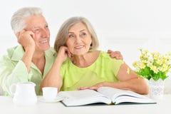 Verticale d'un couple aîné heureux Image stock
