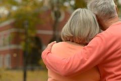 Verticale d'un couple mûr Image libre de droits