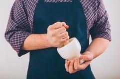 Verticale d'un cuisinier Photographie stock libre de droits