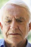 Verticale d'un homme aîné Image libre de droits