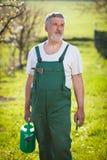 Verticale d'un jardinier aîné dans son jardin Photos libres de droits