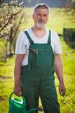 Verticale d'un jardinier aîné dans son jardin Photo libre de droits
