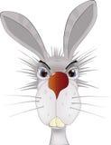 Verticale d'un lapin Images stock