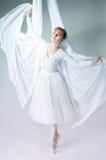 Verticale d'une ballerine Photographie stock libre de droits