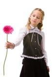 Verticale d'une jeune belle fille avec la fleur Images libres de droits