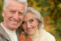 Verticale de beaux couples aînés Photos libres de droits
