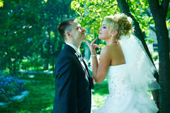 Verticale de beaux jeunes mariés Photo stock
