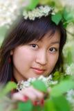 Verticale de belle fille asiatique Image libre de droits