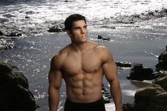 Verticale de Bodybuilder Photos libres de droits