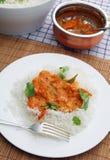 Verticale de cari de tomate du Kerala image libre de droits