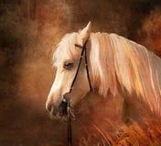Verticale de cheval. illustration stock