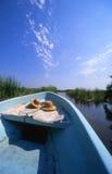 Verticale de conduite de lagune photos libres de droits