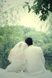 Verticale de couples de mariage Image libre de droits
