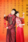 Verticale de couples de mariage Photo stock