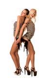 Verticale de deux belles femmes sexy Photographie stock libre de droits