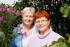 Verticale de deux femmes heureuses Image libre de droits