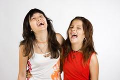 Verticale de deux filles riantes Photographie stock libre de droits