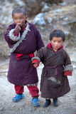 Verticale de deux garçons tibétains dans des vêtements nationaux Image stock