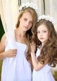 Verticale de deux jeunes amies Photos stock