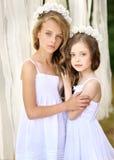 Verticale de deux jeunes amies Images stock