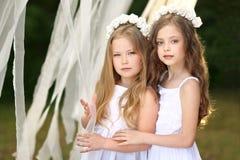 Verticale de deux jeunes amies Image libre de droits