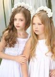 Verticale de deux jeunes amies Image stock