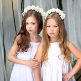 Verticale de deux jeunes amies Photographie stock libre de droits