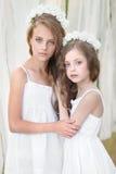 Verticale de deux jeunes amies Photographie stock