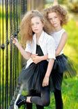Verticale de deux petites filles Photographie stock libre de droits