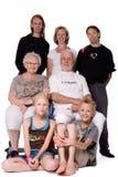 Verticale de famille de studio d'un groupe fou Images libres de droits