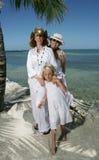 Verticale de famille sur la plage Images libres de droits