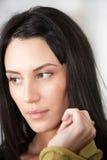 Verticale de femme attirante de brunette Image stock