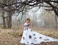 Verticale de femme romantique dans la forêt de féerie photographie stock