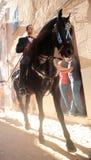 Verticale de festivité de cheval de St John Photographie stock libre de droits