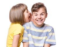 Verticale de frère et de soeur Photos libres de droits