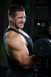 Verticale de grand homme musculaire photo libre de droits