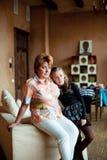 Verticale de grand-mère avec la petite-fille Image stock