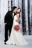 Verticale de jeune homme voulant embrasser sa mariée Photographie stock