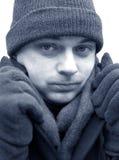Verticale de l'hiver photographie stock