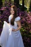 Verticale de la mariée Photos stock