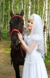Verticale de la mariée Photographie stock libre de droits