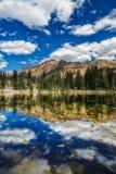 Verticale de lac butterfly images libres de droits