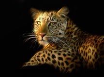 Verticale de léopard Image stock