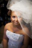 Verticale de mariée Photos libres de droits