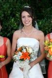 Verticale de mariée Image libre de droits