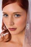Verticale de mariée avec le voile Photos stock