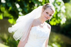Verticale de mariage parfaite absolue Photographie stock