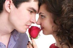 Verticale de plan rapproché de beaux couples dans l'amour Photos libres de droits